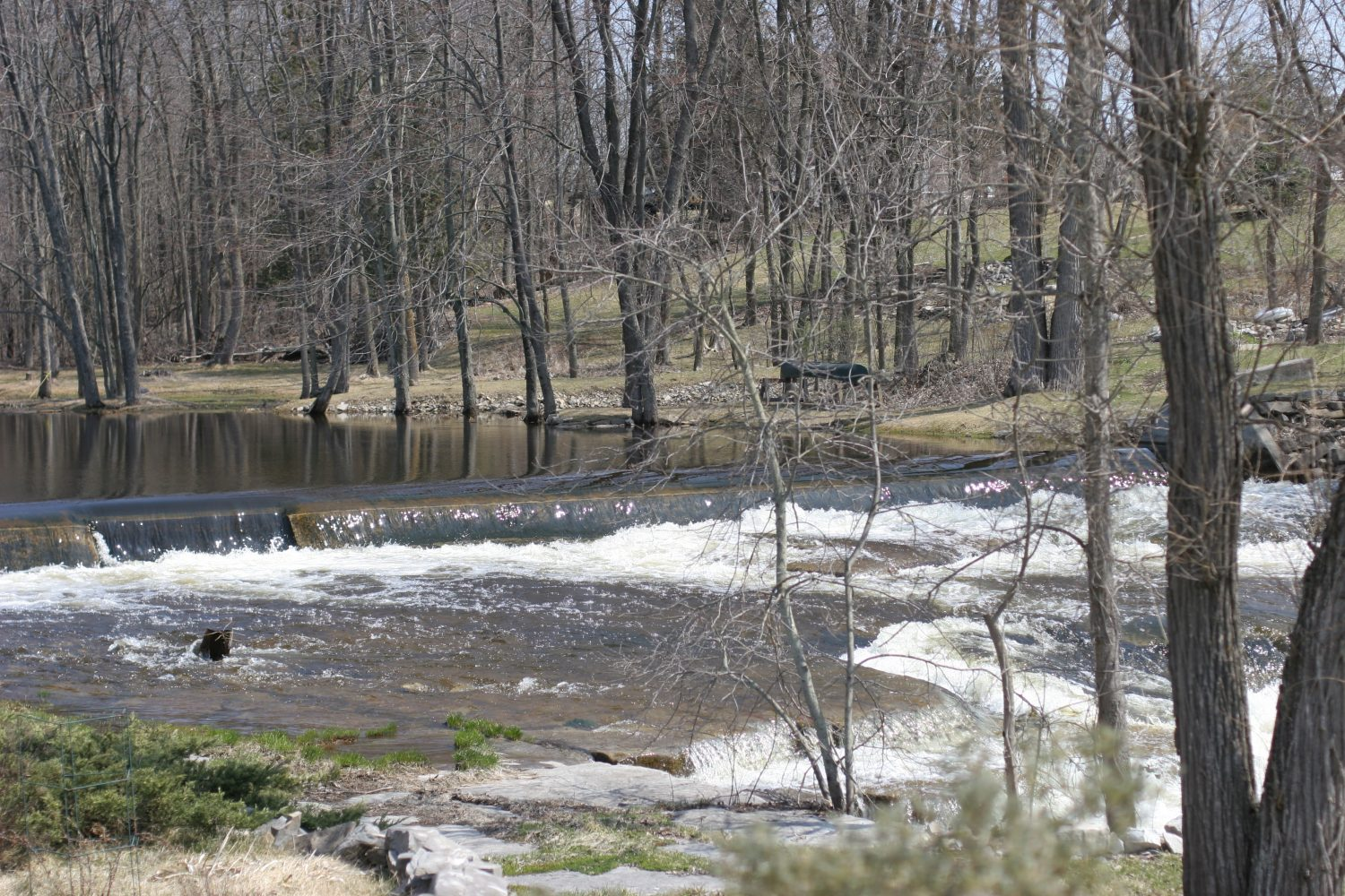 promises of spring river